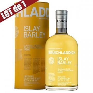 X1-bruichladdich-islaybarley
